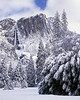New snow, Yosemite Falls