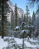 Yosemite Valley, morning, snow and moon